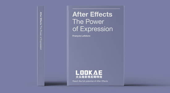 AE表达式实例详解使用手册PDF英文说明书 After Effects The Power of Expression Book AE教程-第1张